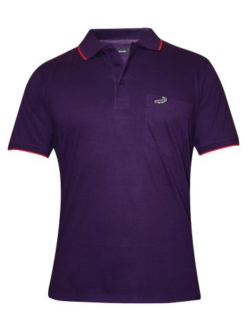 https://static6.cilory.com/181854-thickbox_default/crocodile-purple-polo-pocket-t-shirt.jpg