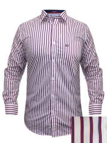 https://static2.cilory.com/187682-thickbox_default/arrow-white-formal-shirt.jpg