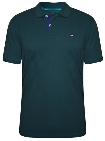 https://static.cilory.com/206558-thickbox_default/arrow-teal-polo-t-shirt.jpg