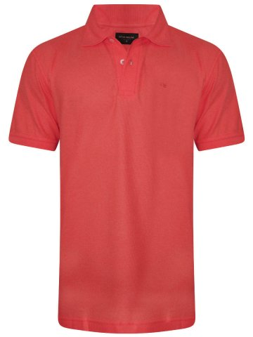 https://static3.cilory.com/315400-thickbox_default/peter-england-coral-polo-t-shirt.jpg