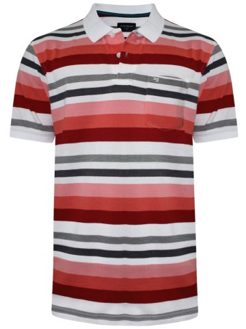 https://static5.cilory.com/316710-thickbox_default/peter-england-stripes-pocket-polo-t-shirt.jpg