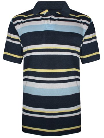 https://static7.cilory.com/323757-thickbox_default/peter-england-navy-stripes-polo-t-shirt.jpg