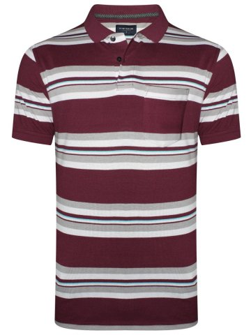 https://static.cilory.com/351010-thickbox_default/peter-england-stripes-pocket-polo-t-shirt.jpg