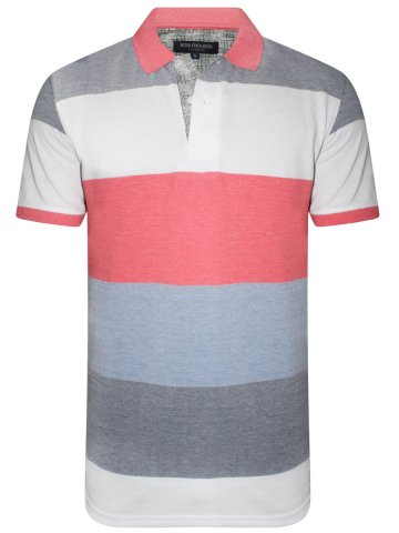 https://static.cilory.com/391177-thickbox_default/peter-england-stripes-polo-t-shirt.jpg